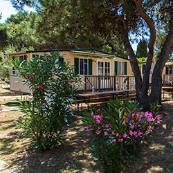Camping Arena Stupice in Kroatien